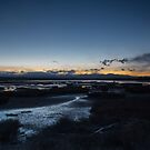 Motueka Estuary by Mark Williamson