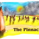 The Pinnacles by David Fraser