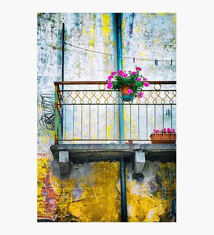 Geraniums on balcony Photographic Print