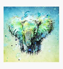 watercolor elephant Photographic Print