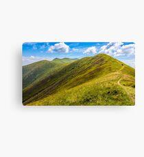 path through a meadow on hillside Canvas Print
