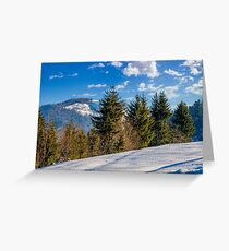 spruce forest on snowy meadow in high mountains Greeting Card
