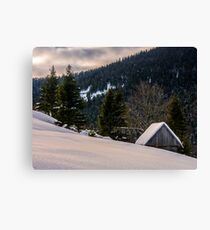 woodshed on the hillside in winter mountains Canvas Print
