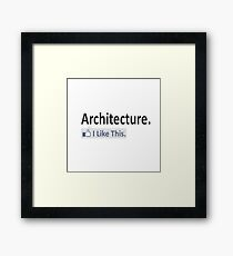 Architecture ... I Like This Framed Print