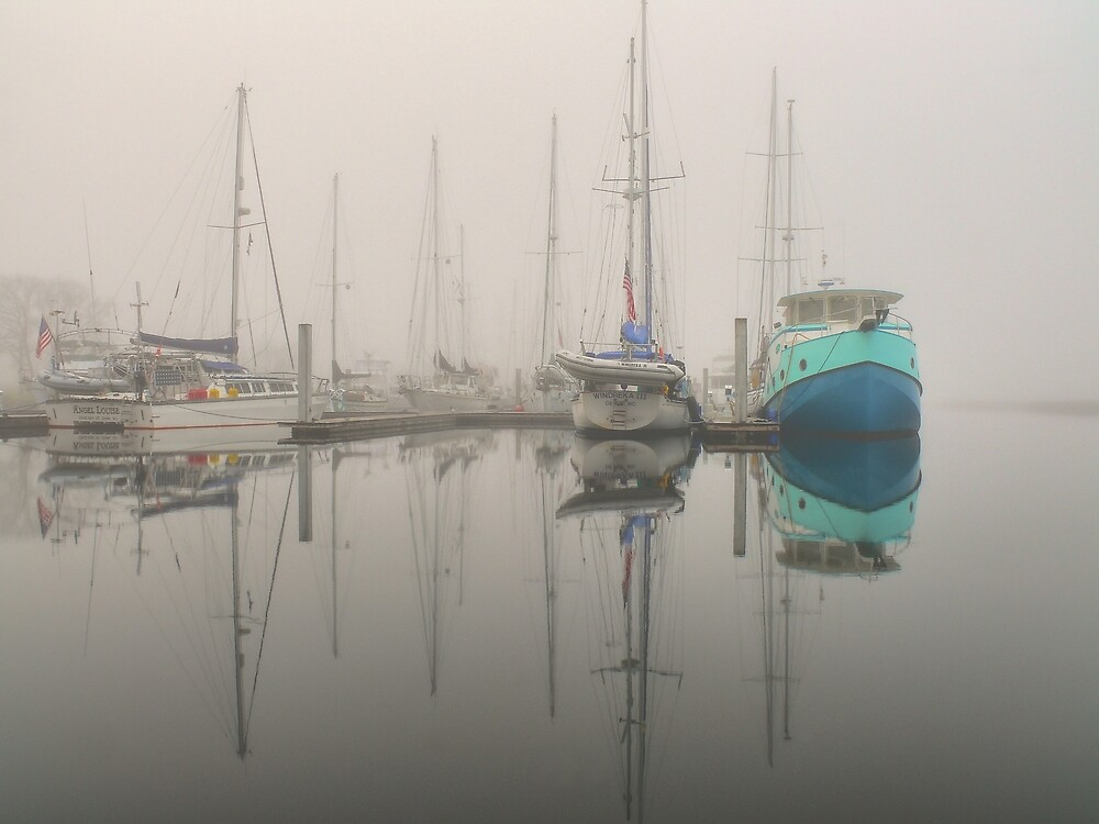 Color In The Mists by John E Adams