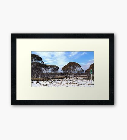 Cooma 100 - Snowy Mountains National Park,NSW Australia Framed Print