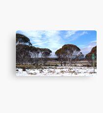 Cooma 100 - Snowy Mountains National Park,NSW Australia Canvas Print