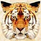 abstract tiger by Ancello