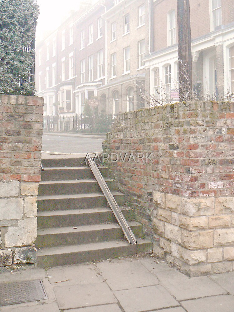 Steps At York's St. Mary's  (V) by AARDVARK