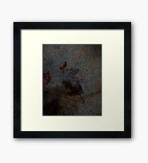 0544 - HDR Panorama - Leaf Rain Shadow Framed Print
