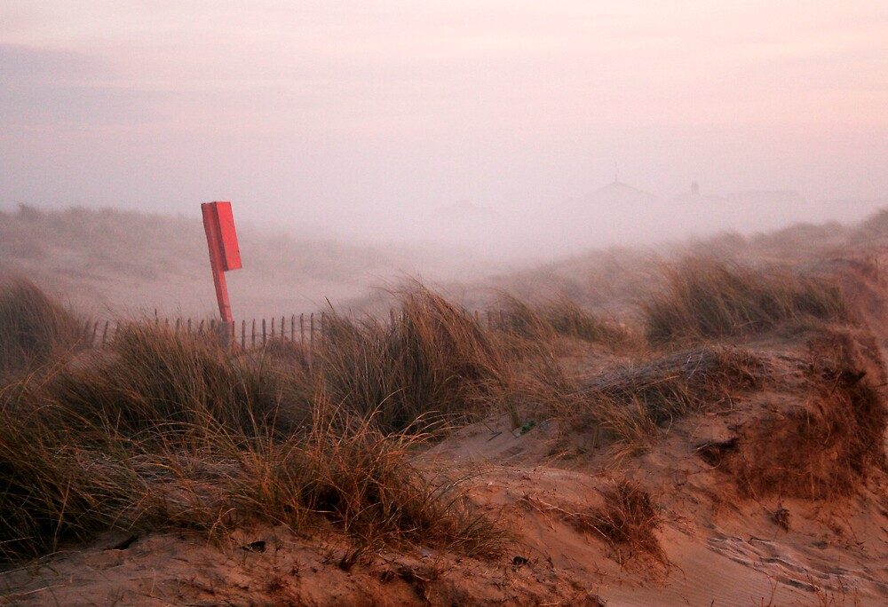 Dawn on the dunes by Laurence Grayson