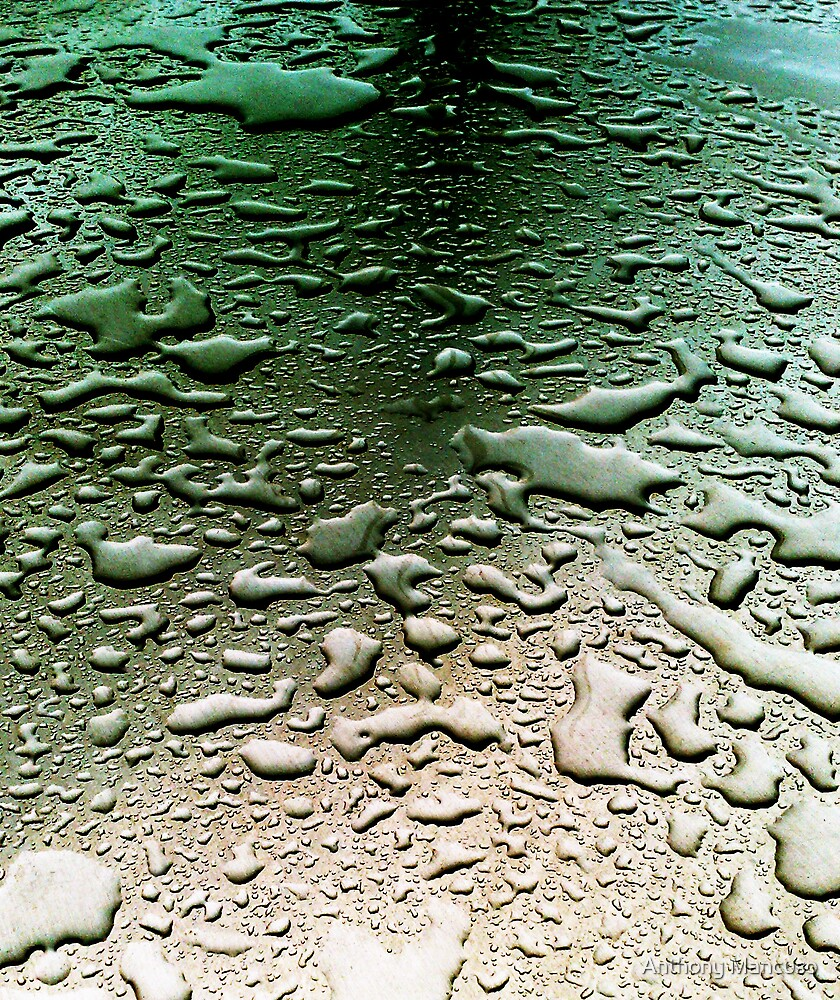 table water by Anthony Mancuso