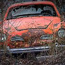 Orange Karmann Ghia by William Fehr