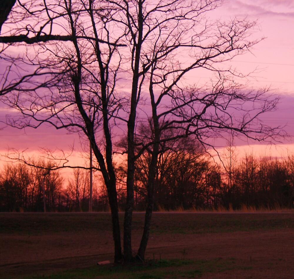 Sun rise but expecting rain by mel1forjon