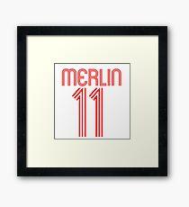 Merlin 2 Framed Print