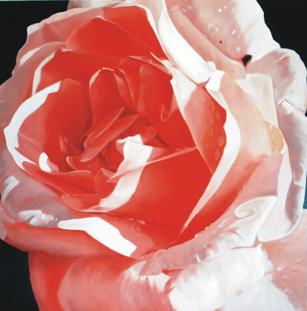 Cathy's Rose by Melissa Mailer-Yates