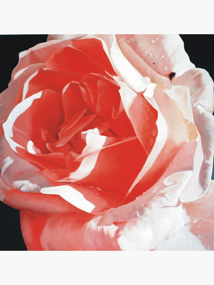 Cathy's Rose by melissamyartist