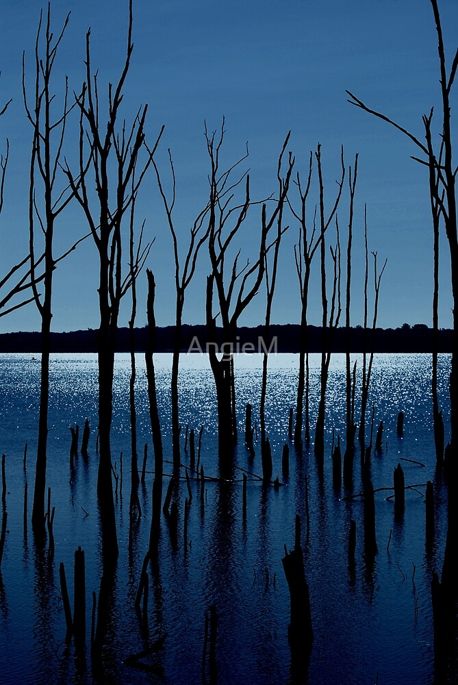 Blue Reservoir by Angie Tirado