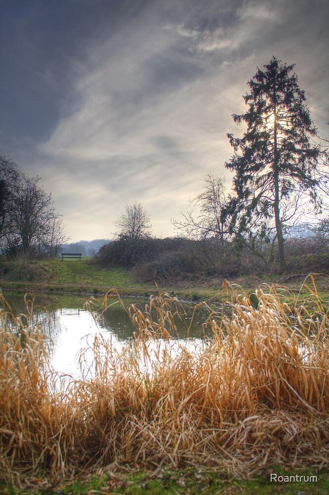 Southdown Ponds by Roantrum