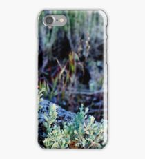 Spring in the High Desert iPhone Case/Skin