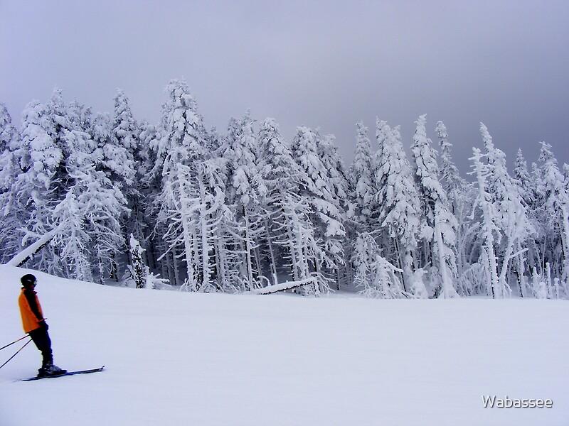 Winter blanket by Wabassee