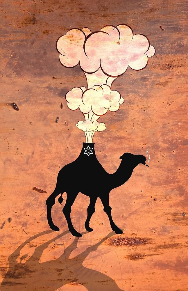 Camel by Tony Vazquez
