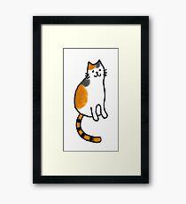 Smiling Calico Cat Framed Print