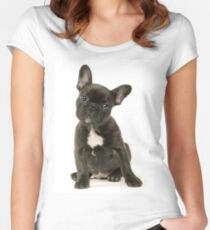 Cute French Bulldog Puppy Women's Fitted Scoop T-Shirt