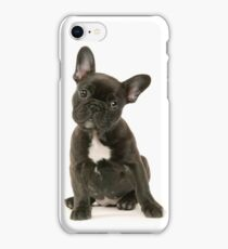 Cute French Bulldog Puppy iPhone Case/Skin