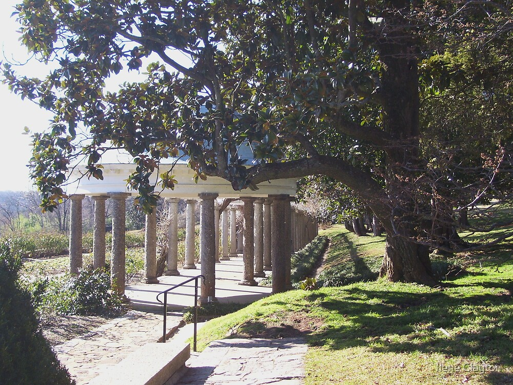 Arbor Retreat by Ilene Clayton