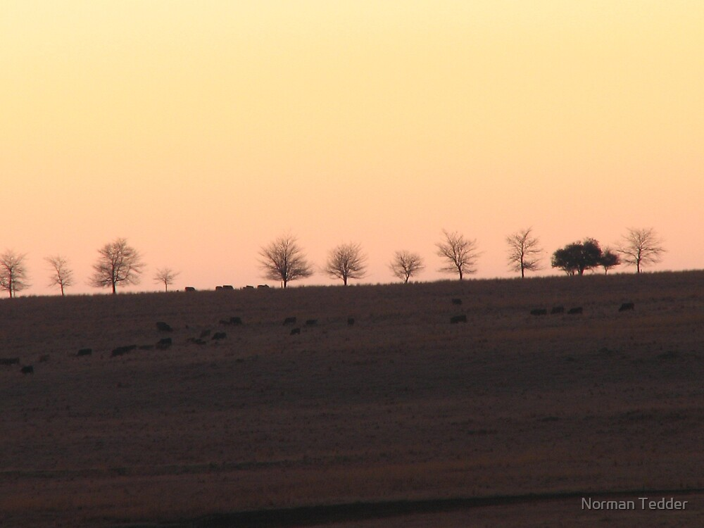 sunset on the farm 2 by Norman Tedder
