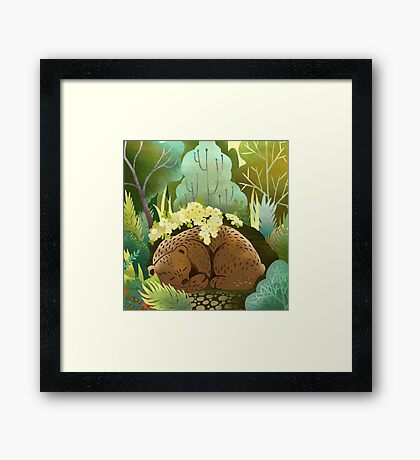 Bear Nest Framed Print