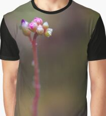 The Drosera Spatulata. For all you carnivores. Graphic T-Shirt