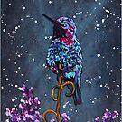 Humming Bird by Rachelle Dyer