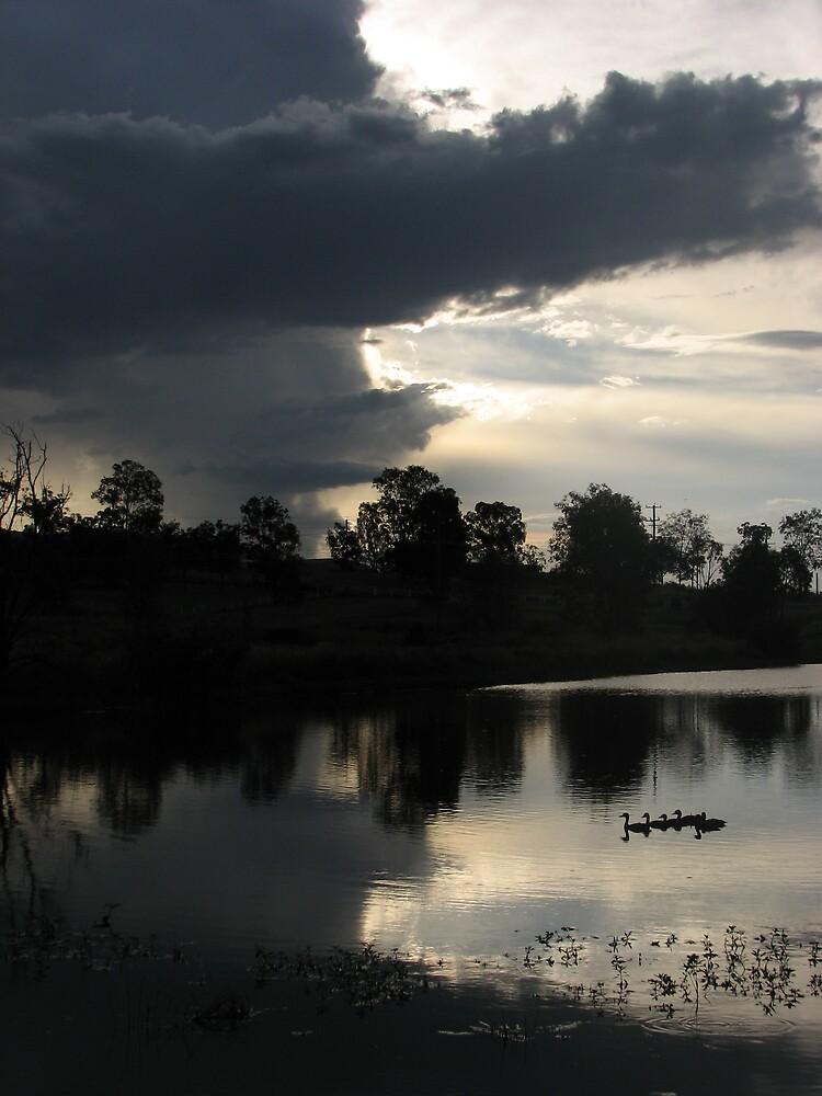 Apex Lake Sunset by Dave Fleming