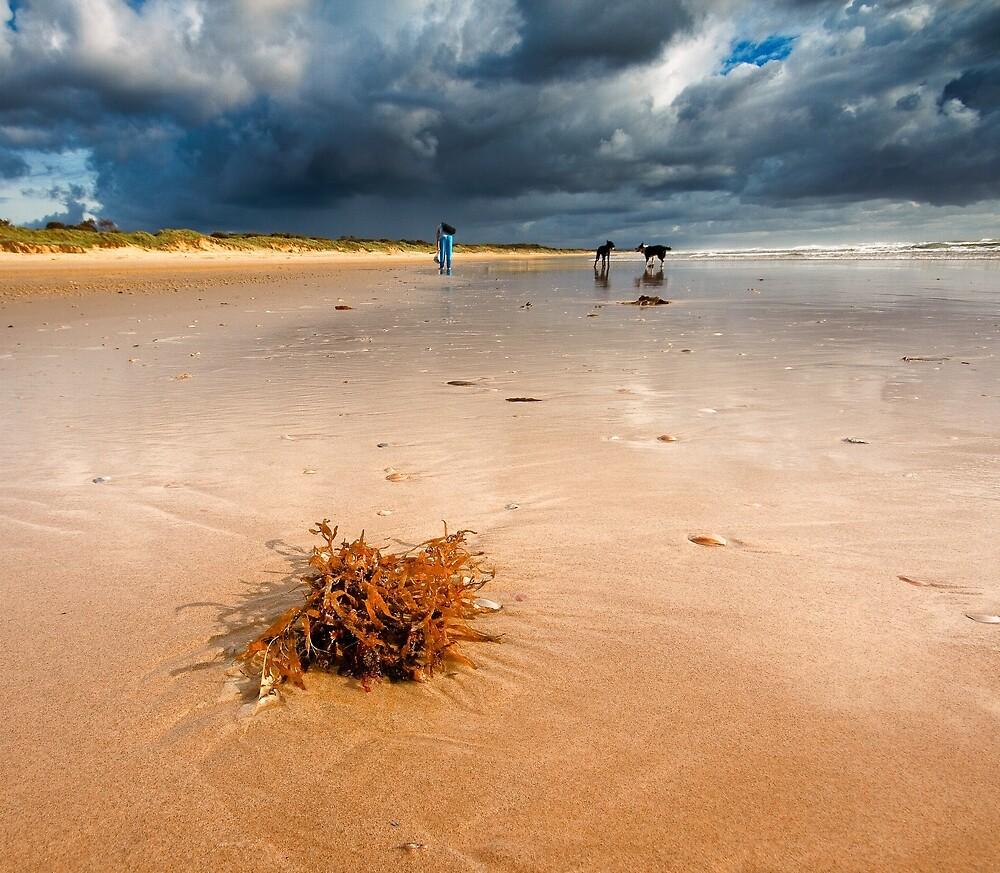 la plage, la mousson d'ete..stormy beach by RickinNR