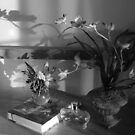 Black and White Still Life 1 by eoen