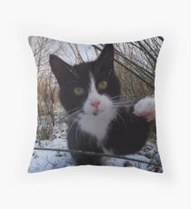 Morrigan, Feral of the Wilds Throw Pillow