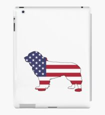 American Flag – Newfoundland iPad Case/Skin