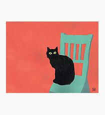 Cubano Kitteh Photographic Print