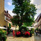 Regensburg Courtyard by Tom Gomez