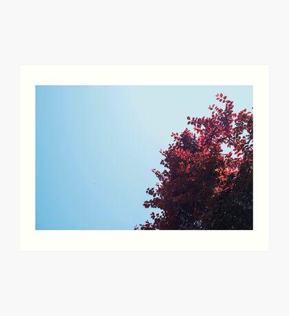 Lieber roter Baum Kunstdruck