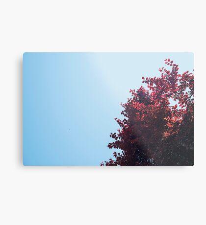 Lieber roter Baum Metallbild