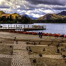 Wildfowl at Derwentwater by Tom Gomez