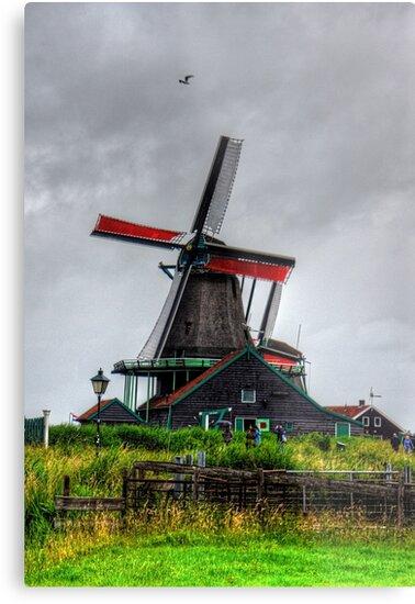 Dutch Windmill by Tom Gomez