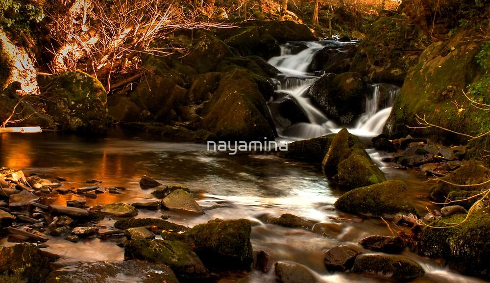 Stream waterfall and pool by nayamina