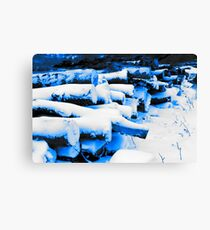 Soft Snow on Tree Logs Canvas Print