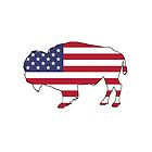 Amerikanische Flagge - Bison von DelirusFurittus