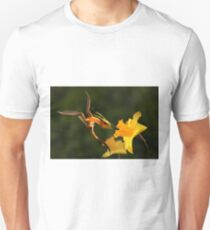 Welsh Dragon and Daffodils Unisex T-Shirt