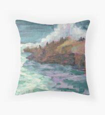 Cormerants at Leo Carillo Beach Throw Pillow